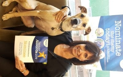 Vote for Freshfields in Pet Plan Awards 2019!