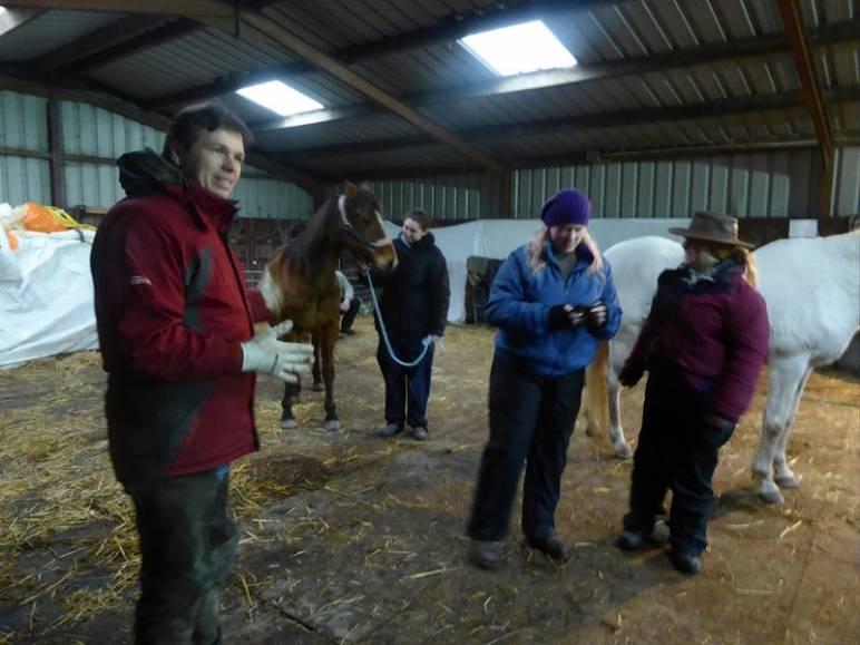 We host an Equine Podiatry workshop/