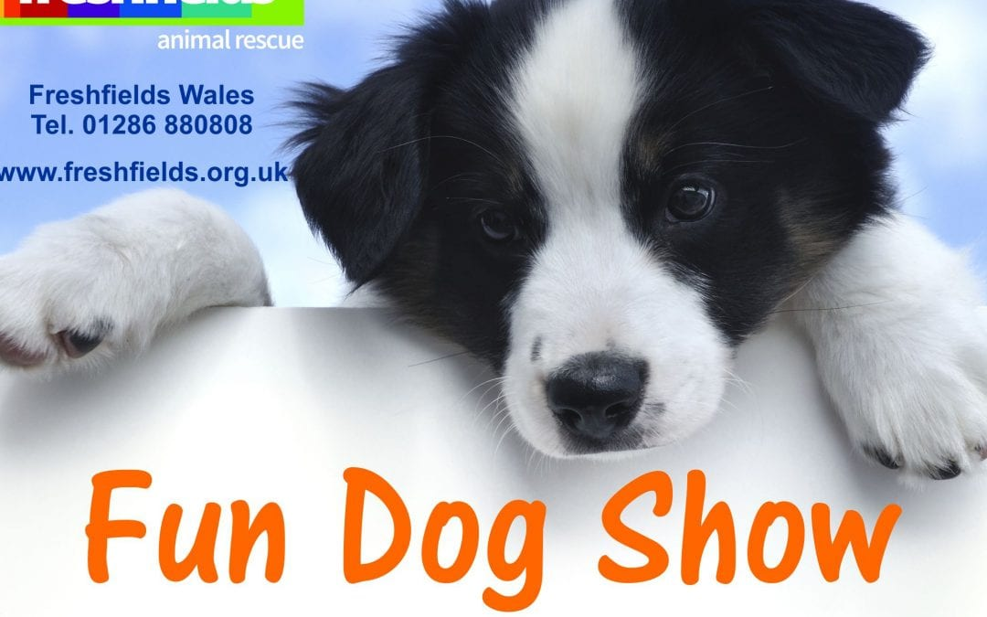 Freshfields Wales Fun Dog Show – 8/9/2019