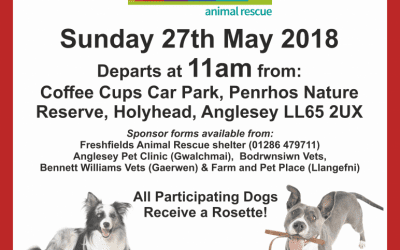 Sponsored Walk for Special Pooches!